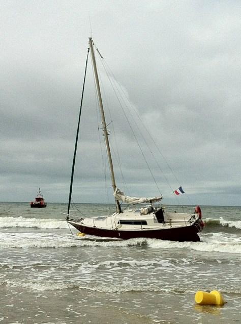 Céding échoué sur La Baule ! Photo de Franck Bercegeais !