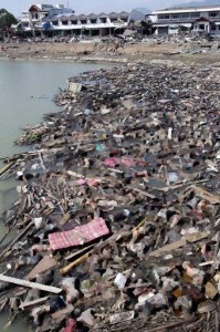 Destruction after Cyclone Nagris, Myanmar. A blur has been added to this photo.