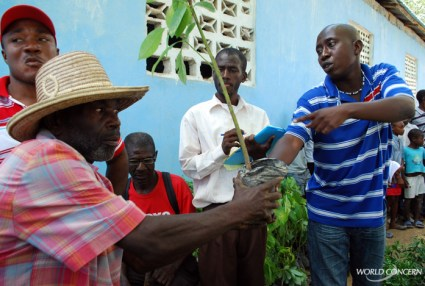 World Concern humanitarians give a man in Haiti a fruit tree to help feed him after hurricanes.