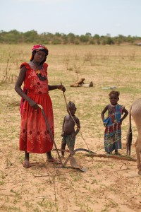 A mother in Chad with her donkey plow.