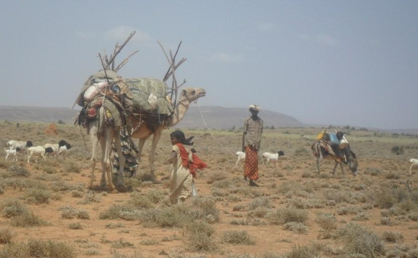 Pondering home in Somaliland