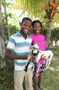 Healthy kids with goats in Lyncee.