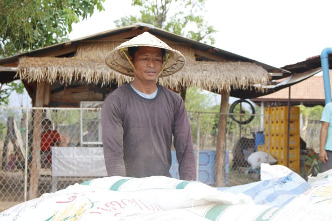 Laos Rice Distribution