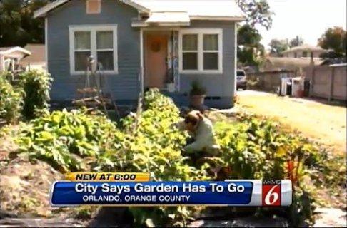 illegal-garden