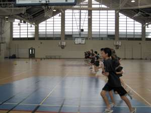 Sport-specific high-intensity fitness tests Beep-Test