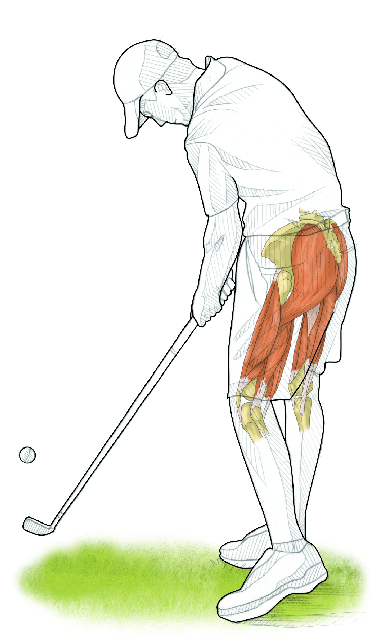 Strength exercises for golf improvement to golf swing