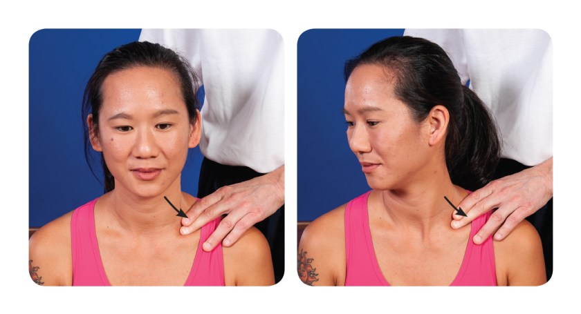 Active assisted soft tissue release for the upper back scalenes