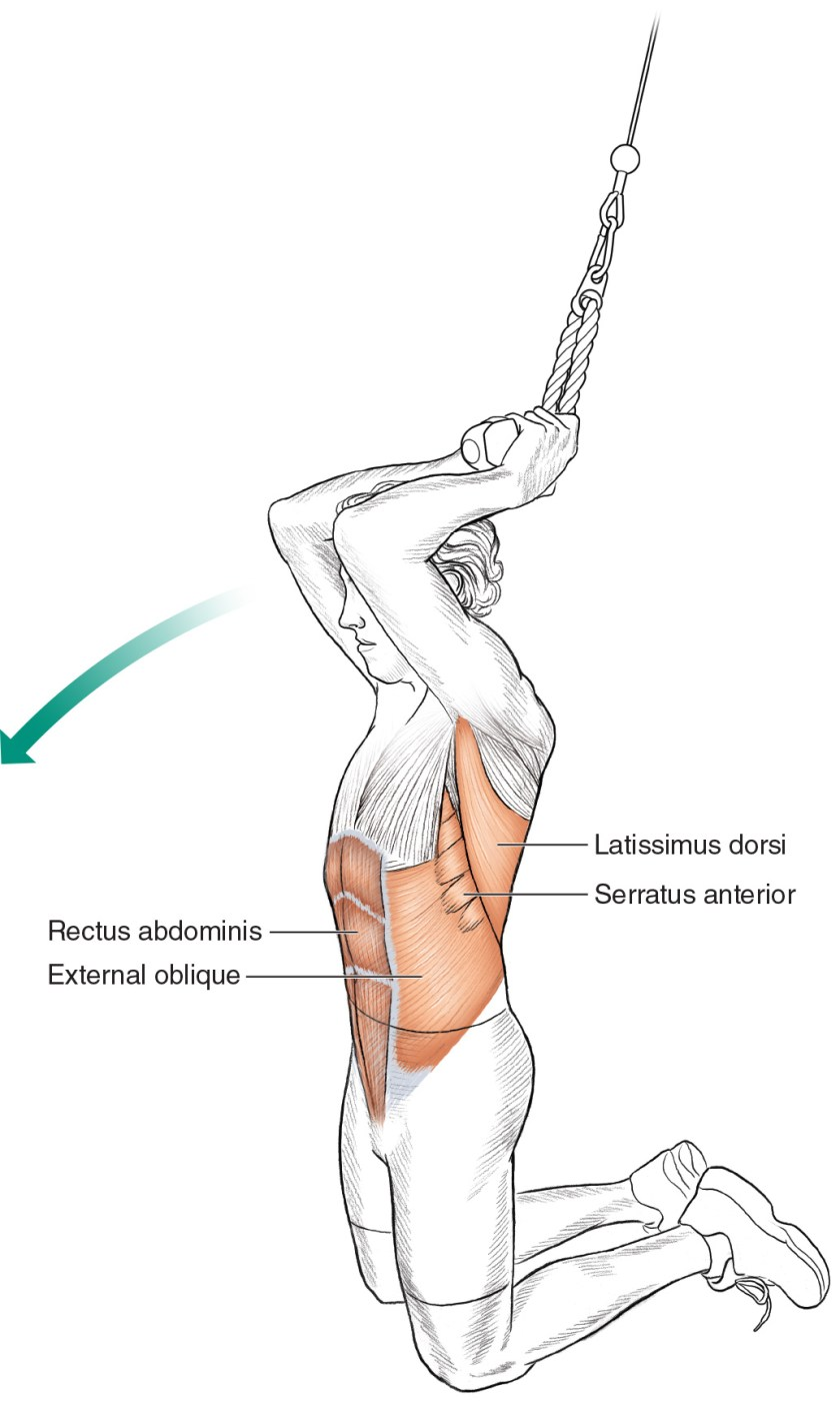 Core exercises for cyclists - Kneeling Rope Crunch