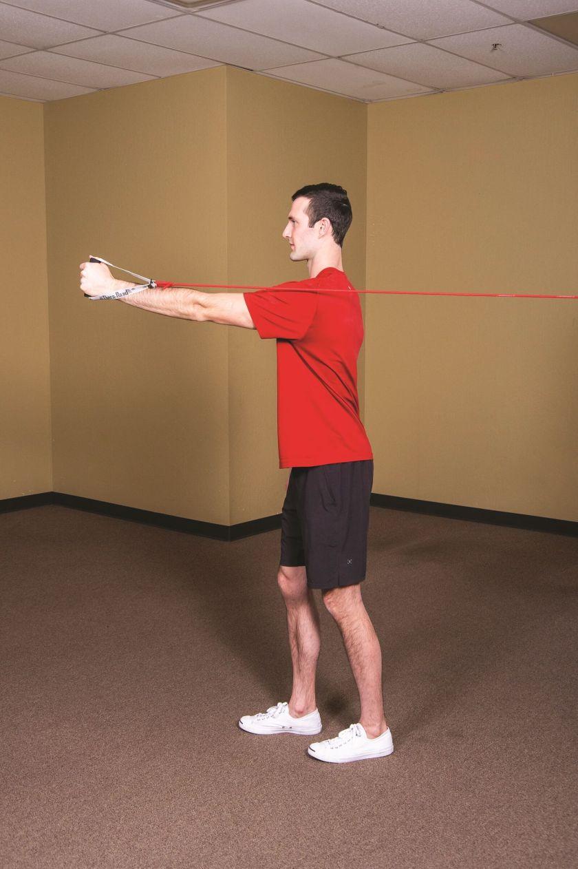 Serratus punch shoulder workout