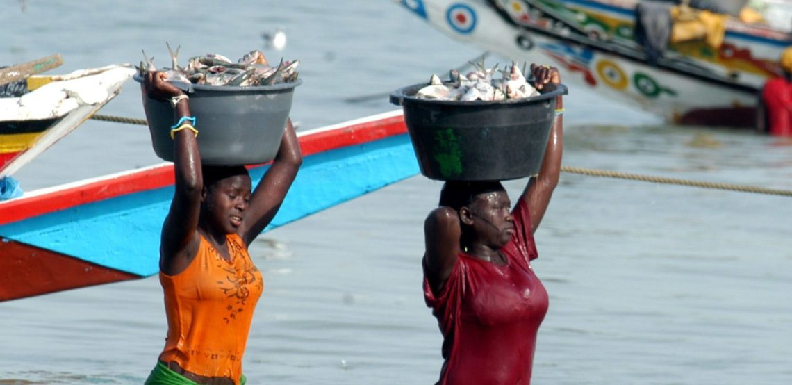 two women with buckets of fish in their heads in the Gambia