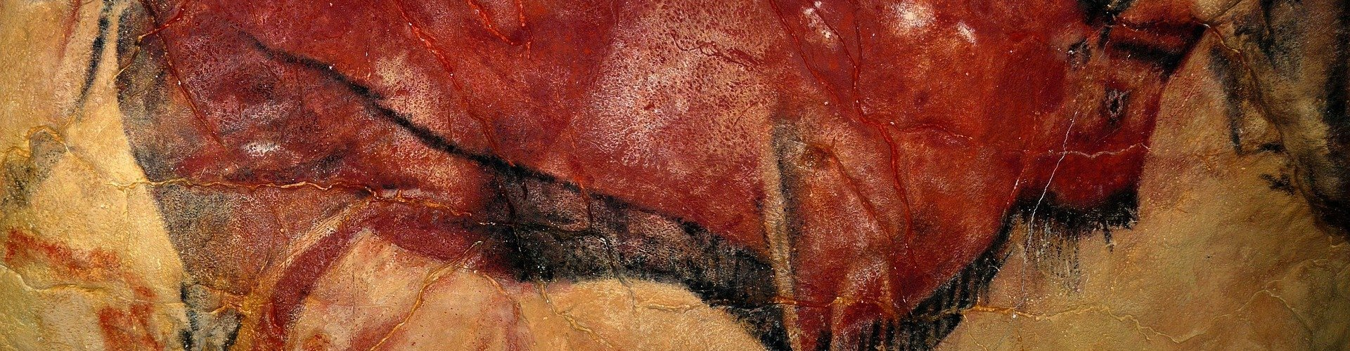 cave painting of a bison