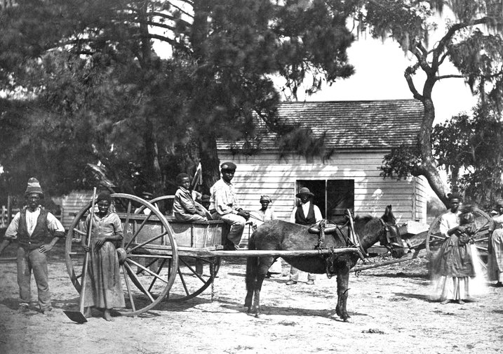 slaves with a horse and carriage on Edisto Island in 1862