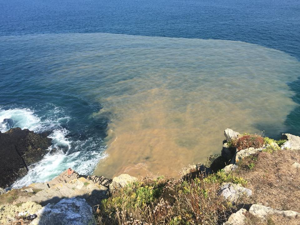 raw sewage being discharged in to sea off cornwall