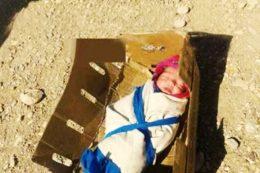 2-day-old-baby-girl-abandoned-in-the-desert-for-Photo-irannaz-com-2-765x510.jpg