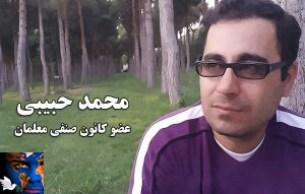 mohammad-habibi-300x191.jpg