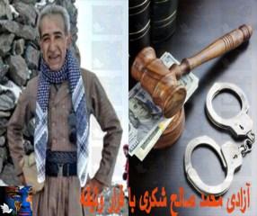 محمد صالح شکری .jpg