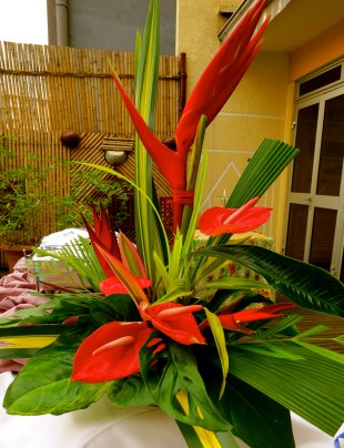 The red of tropical flowers.