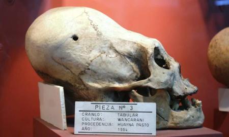 paracas skulls 1