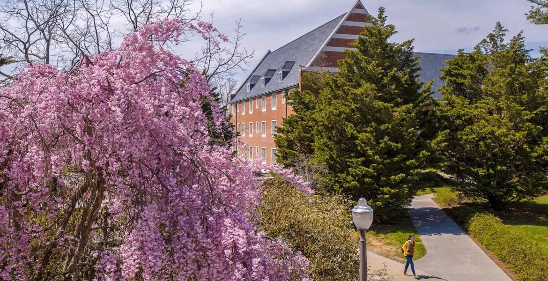 Virginia Tech Spring