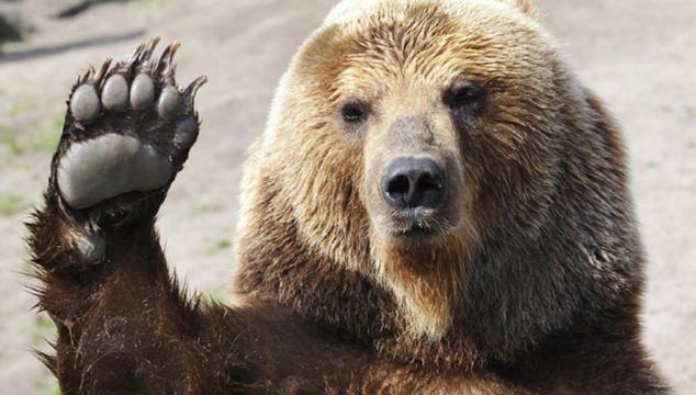 5 Things Alaskans Never Say