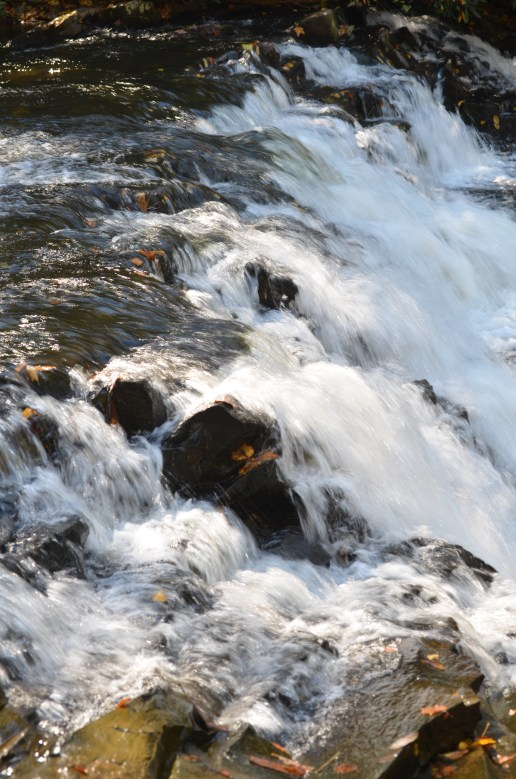 Beginning of the Coker Creek Falls series