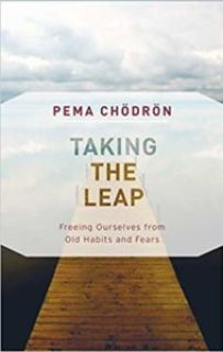 """""""Taking the Leap: Freeing Ourselves from Old Habits and Fears"""" by Pema Chödrön"""