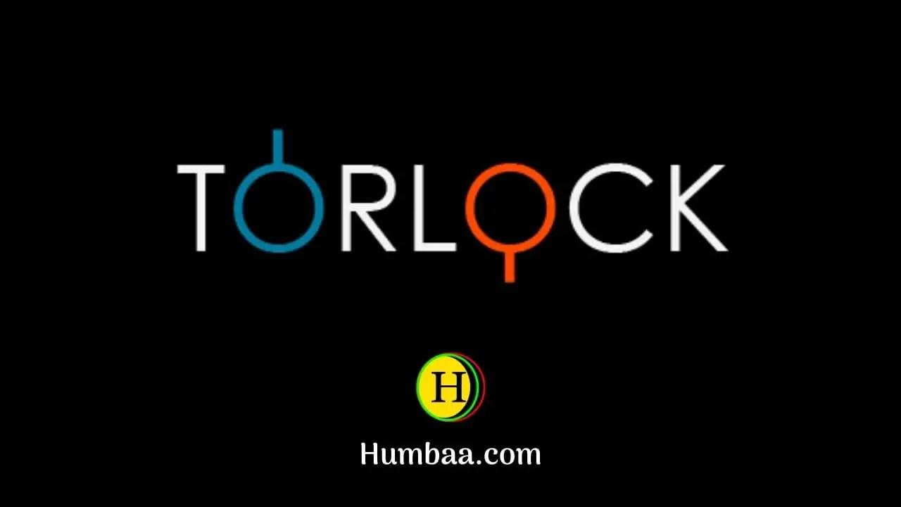 Torlock logo
