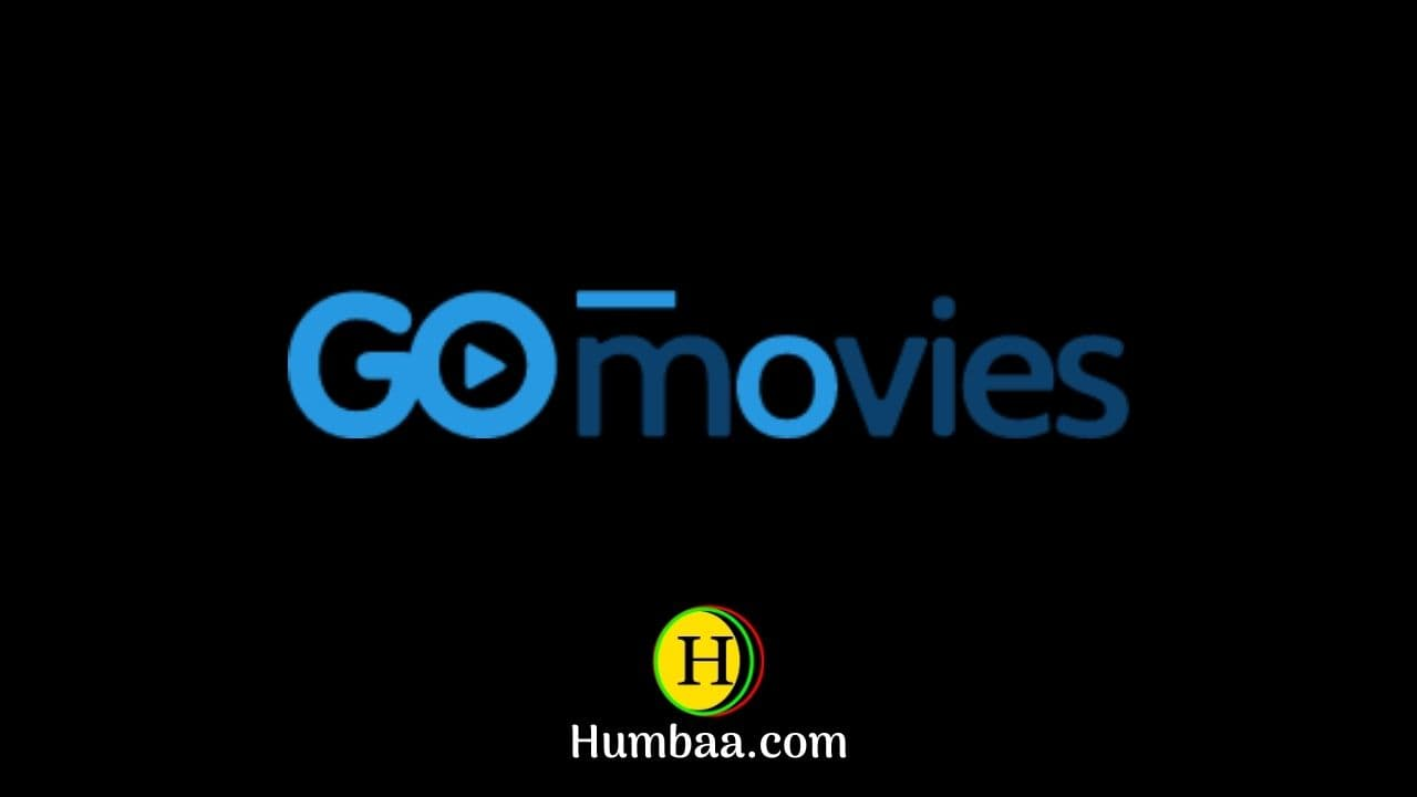 123Movies, Putlockers, Fmovies, Gomovies, Solarmovie, Soap2day & Vumoo Free Movies sites