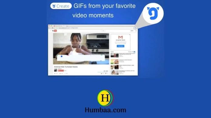 Gfycat: GIFs, stickers & memes on Humbaa
