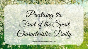 Fruit of the Spirit – Practicing the Fruit of the Spirit Characteristics Daily to Glorify God