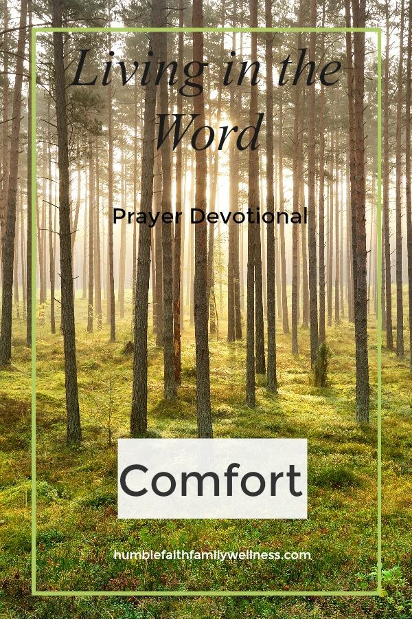 Comfort, Prayer Devotional