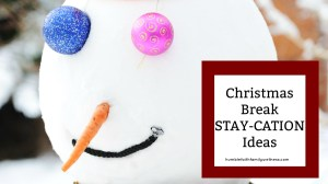 Christmas Break Stay-cations Ideas
