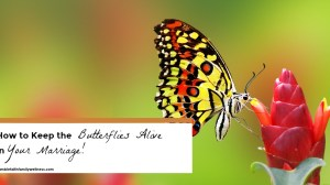 Ways to Keep the Butterflies Alive