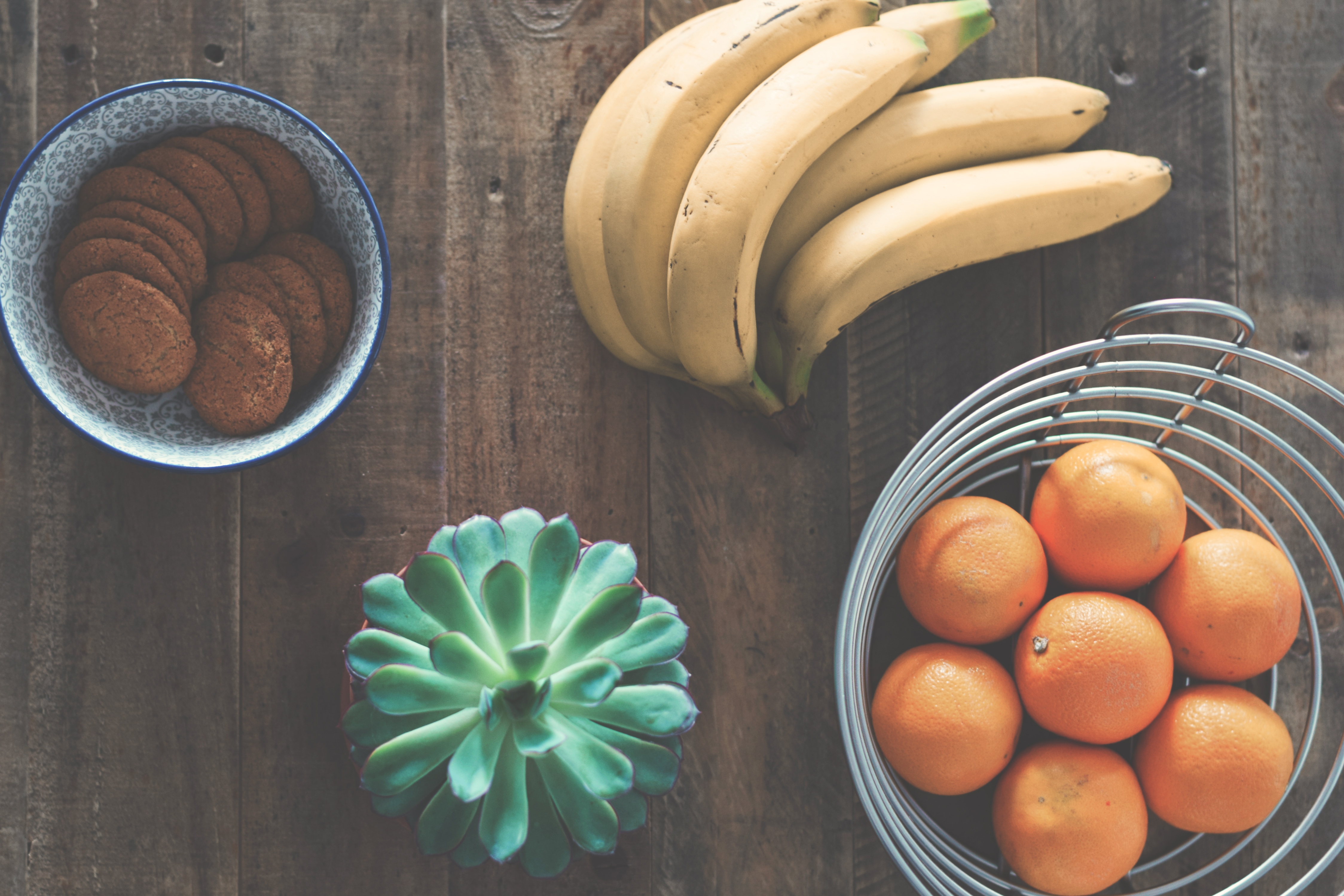 3 Tips for Diets in Transition