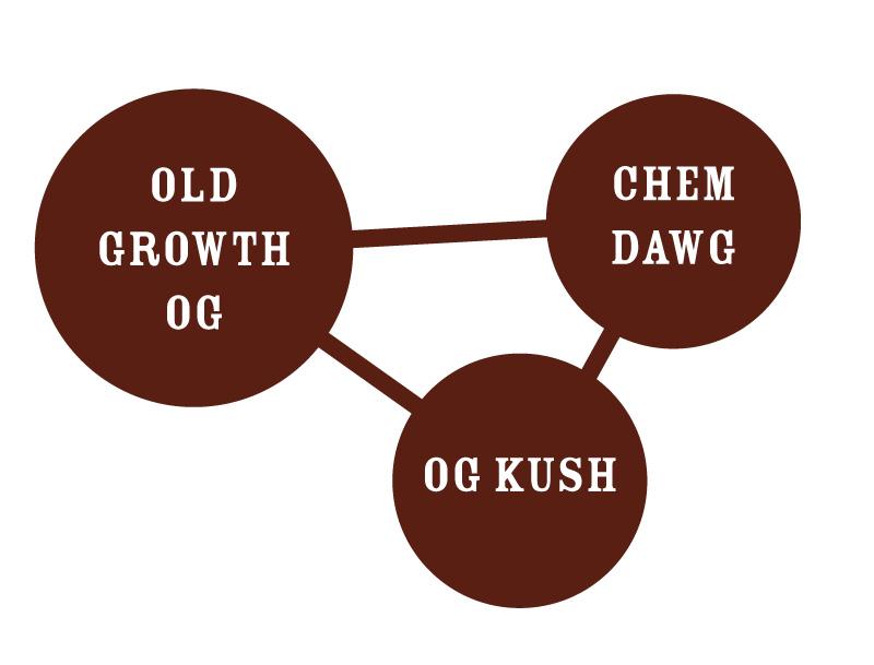 Old Growth OG Strain Chart