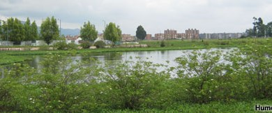 Humedal Jaboque