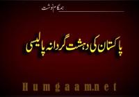 پاکستان کی دہشت گردانہ پالیسی