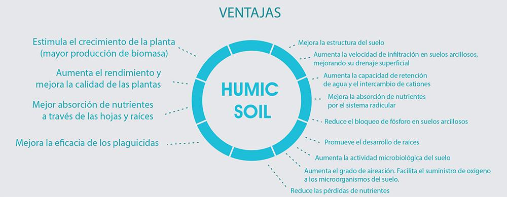humic_soil