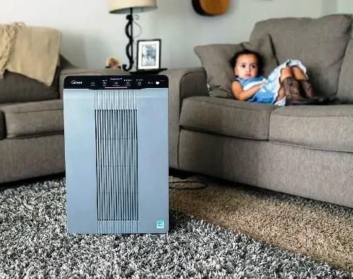 Image of humidifier vs air purifier