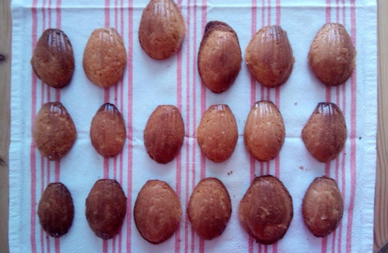 Nouvelles madeleines