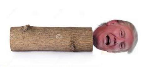 Trumplog