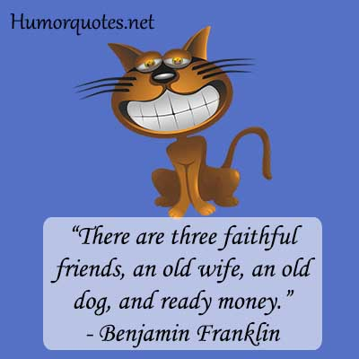 Funny quotes for companion