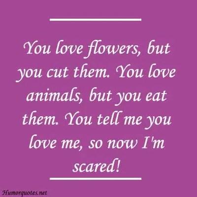 Romantic humorous quotes