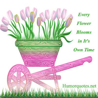 flower quotes funny