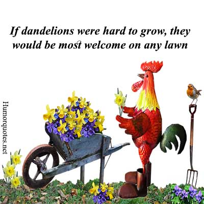 if hard to grow