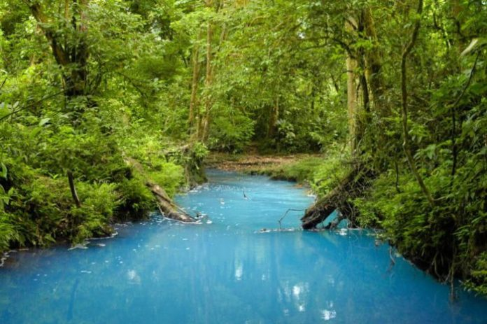 Blue River, Tenorio National Park, Costa Rica
