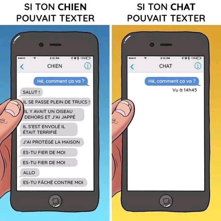 Si ton chien pouvez texter