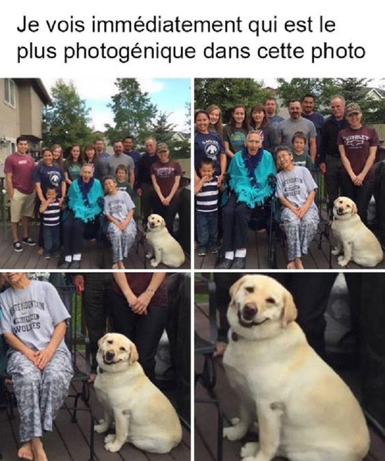 Je vois immédiatement qui est le plus photogénique dans cette photo