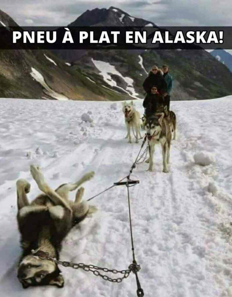 Pneu à plat en Alaska