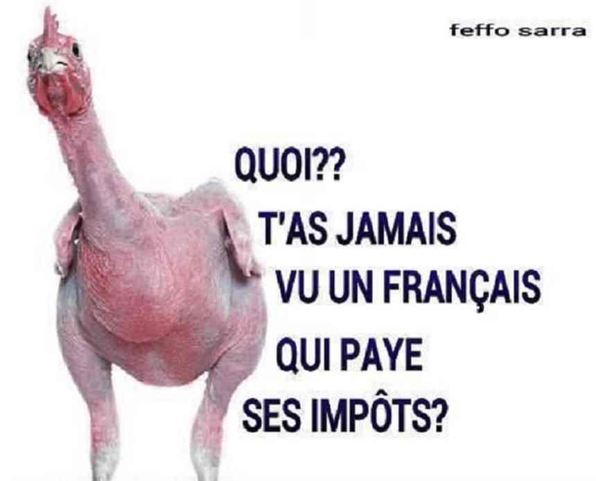 T'as jamais vu un français qui paye ses impôts ?